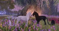 Teeglepet Unicorn (teagerthehorse) Tags: secondlife unicorn horse equestrian fantasy faire animesh rideable pet