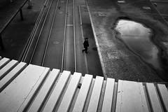 Россия (gato-gato-gato) Tags: apsc fuji fujifilmx100f street streetphotography x100f zurich autofocus flickr gatogatogato pocketcam pointandshoot streettogs wwwgatogatogatoch black white schwarz weiss bw blanco negro monochrom monochrome blanc noir strasse strase onthestreets streetpic streetphotographer mensch person human pedestrian fussgänger fusgänger passant schweiz switzerland suisse svizzera sviss zwitserland isviçre zuerich zurigo zueri fujifilm fujix x100 x100p digital