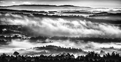 Val do Ulla (Noel F.) Tags: sony a7r a7riii iii canon fd 300 56 galiza galicia fog neboa mist val ulla