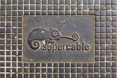 °supercable (J.Legov) Tags: gusseisen panasoniclumixdmczx31 2013 chamäleon kabelschachtdeckel