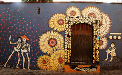 Oaxaca street art (Harry Szpilmann) Tags: oaxaca streetart painting mural graffiti jalatlaco streetphotography flower mexico mexique