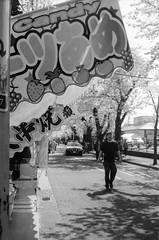 第48回常盤平さくらまつり(3) (48th tokiwadaira cherry-blossom festival 3) (Dinasty_Oomae) Tags: rollei35 rollei ローライ35 ローライ 白黒写真 白黒 monochrome blackandwhite blackwhite bw outdoor 千葉県 千葉 chiba 松戸市 松戸 matsudo sakura サクラ 桜 cherryblossom street 常盤平 tokiwadaira 露店 streetstall 祭 festival