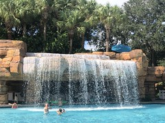 The waterfall at the Dolphin Hotel pool in Disney World (Hazboy) Tags: 2018 september world hotel dolphin disney florida hazboy1 hazboy