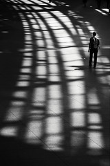 Shadow rail (reiko_robinami) Tags: street streetphotography shadow lightandshadow oneperson monochrome pattern blackandwhite tokyo japan