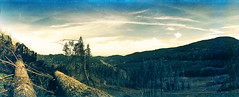 Widelux // Kodak Vision 100T (The 69th Dimension) Tags: film filmphotography nature hiking pacificnorthwest pnw washingtonstate landscape analog 35mm widelux panorama