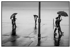 The umbrella's danse (sillon.photo) Tags: blackandwhite umbrella noiretblanc bw nb street streetphotography people rain sea monochrome composition saintmalo bretagne pluie mer parapluie