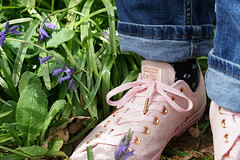 spring in your step (SCRIBE photography) Tags: uk england dorset wimborne pamphill kingstonlacy nationaltrust bluebell bluebells feet foot trainer trainers footwear converse allstar pink spring season seasonal laces lace plant garden
