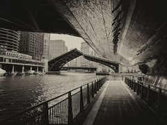 Cover (ancientlives) Tags: chicago chicagoriver river riverwalk illinois il usa travel trips downtown loop architecture towers buildings walking marinetowers moorings chicagoparks mono sepia april thursday 2019 spring