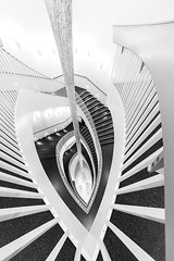 All the Way Down (Karen_Chappell) Tags: stairs steps staircase art museum gallery architecture bw black white blackandwhite railing lines curves abstract fisheye canonef815mmf4lfisheyeusm wideangle travel usa chicago illinois interior building pattern geometry geometric