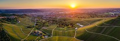 Panorama Sunset (DrQ_Emilian) Tags: landscape view vineyards hills city town urban urbex outdoors cityscape sunset sunshine dawn evening mood moody sky goldenhour aerial travel visit explore discover kappelberg grabkapelle luginsland fellbach stuttgart badenwürttemberg germany photography hobby drone djimavic2pro wanderlust beautifull