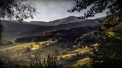 Morgensonne (wernet.berthold) Tags: sonne tal täler schwarzwald dorf nikon d500 morgensonne licht wald baüme spezial landschaft frühling wälder
