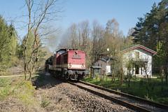 Ich wünsch mir mehr Bahnverkehr (wolf238) Tags: diesellok train zellwald wald eisenbahn