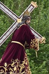 DSC_6242 (M. Jalón) Tags: mañana semana santa porcuna procesión ntro nuestro padres jesús nezareno verónica san juan 2019 pasión religión viernes santo