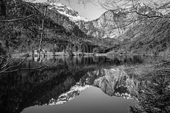 Frühling am Langbathsee (ANVOTO) Tags: efm22f2stm nature langbathsee landscape landschaft orte see wasser austria wald oberösterreich natur gebigre alpen canoneosm5