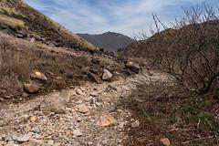 20190416a73_7242 (Gansan00) Tags: ilce7m3 α7ⅲ sony japan 大分 oita 日本 九重連峰 登山 landscape snaps ブラリ旅 04月 fe24105f4 trekking travelphotography