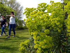 Beth Chatto Gardens (Jason_Cobb) Tags: beth chatto essex