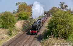 48151 | Sound Lane | 17th April '19 (Frank Richards Photography) Tags: the salopian ii 1z40 dumfries shrewsbury stanier 8f 48151 train steam railtour nantwich wrenbury sound lane bridge spring nikon d7100 uk england locomotive cheshire wednesday 17th april 2019 west coast railway company wcrc mark1 coach lms freight loco