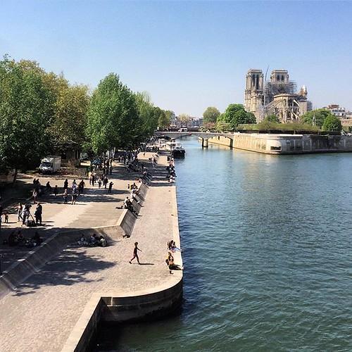 #paris #notredame #notredamedeparis #seine