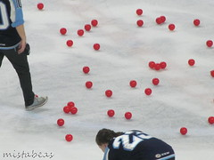 Chuck A Puck Cleanup (mistabeas2012) Tags: milwaukee admirals