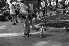3_DSC7042 (dmitryzhkov) Tags: street moscow russia life human monochrome reportage social public urban photojournalism city streetphotography documentary people bw dmitryryzhkov blackandwhite everyday candid stranger