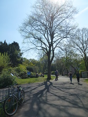 Sunny Spring 2019 (KiranParmar) Tags: sunny spring 2019 leicester april