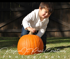 Pumpkin Pickin (keepinitrealcreations) Tags: kids baby boys pumpkin picking fall fun decor nc photo photography photoshoot