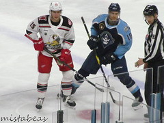 15 On 10 (mistabeas2012) Tags: ahl hockey