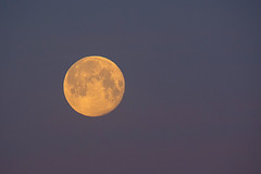 Full Solent Pink Moon (fstop186) Tags: fullmoon pink solent dawn sunrise