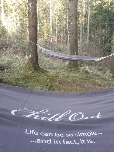 chill out im Wald