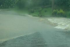 The Big Wet #3 (120/365) (johnstewartnz) Tags: centraldivision fiji canon canonapsc apsc eos 7dmarkii 7d2 7d canon7dmarkii canoneos7dmkii canoneos7dmarkii 2470 2470mm ef2470mmf4l canonef2470f40l fijiislands vitilevu rain heavyrain flood flooding 100canon 120365 day120 onephotoaday oneaday onephotoaday2019 365project project365