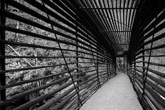 Bridge with Stripes (sebastienvillain) Tags: switzerland suisse fujifilm fuji xe2 xseries noiretblanc blackandwhite bw nb monochrome bridge pont stripe rayure stripes rayures xf18mm