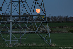 Pink Moon & Pylon (deltic17) Tags: moon supermoon lunar pink pinkmoon sky evening dusk orange bigmoon electricity pylon field countryside canon canon5dmk4 photography tripod