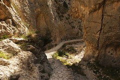 El Cami ................. (DAVID.gv65) Tags: selección david65 color chrome alcoi piedra natural montaña arboles natur barrancdelsinc dgvalor photodgv