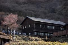 20190416a73_7334 (Gansan00) Tags: ilce7m3 α7ⅲ sony japan 大分 oita 日本 九重連峰 登山 landscape snaps ブラリ旅 04月 fe24105f4 trekking travelphotography
