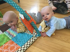 """Sam and Luc Have Tummy Time • <a style=""""font-size:0.8em;"""" href=""""http://www.flickr.com/photos/109120354@N07/33773339238/"""" target=""""_blank"""">View on Flickr</a>"""