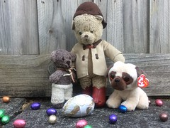Paddington and the Easter Egg Hunt 9. (raaen99) Tags: paddington paddingtonbear paddybear paddy teddy teddybear bear softtoy vintage vintageteddy vintageteddybear vintagetoy handmade softie plush cute cuddly soft scout scoutbear cuddle hug littlebearhug biglittlebearhug knitting knitted knittedtoy fairtrade fairtradebear scouthouse easter easteregg easterfood eastereggs eggs chocolateegg chocolateeggs foil easterchocolateeggs chocolateeasteregg chocolateeastereggs haighschocolate haighschocolateeasteregg haighseasteregg easterbilby easterduck confectionery chocolate chocolates sweetmeats sweetmeat garden grass lawn leaves plants eastersunday easteregghunt easter2019 pâques happyeaster joyeusespâques froheostern ostern pasen vrolijkpasen 复活节快乐 eastersundaymorning eastermorning morning pug beanniebaby pugdog