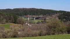 193 213 / ELL/WLC - Deining (lukasrothmann) Tags: bayern oberpfalz deining trains train zug lok lokomotive vectron 193 wlc ell containerzug laberviadukt labertal
