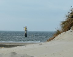 At the beach (ruedigerdr49) Tags: beach nature sea landscape outdoor