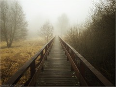 Mystery And Imagination (Maximilian Busl) Tags: harz path way bridge melancholia mist fog hasselblad winter contemplation