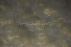 Lombok (sunrisejetphotogallery) Tags: lionair boeing737900 pklgv sunset sky lombok airliner indonesia
