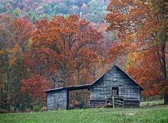 Peaceful Old Barn (fine art by Christy) Tags: farmpainting oldhouse oldfarm farm oldbarn barn rustic countryscene farmhouse fallcolorslandscapepainting landscapephoto