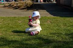 Cherry Pepsi thief! (timnutt) Tags: parkland xt2 northampton northamptonshire wicksteedpark children child people fuji 35f2wr park toddler 35mm fujifilm kettering
