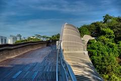 Henderson Waves pedestrian bridge in Singapore (UweBKK (α 77 on )) Tags: hendersonwaves henderson waves pedestrian bridge wood tree southernridges southern ridges nature park garden walk path hike singapore southeast asia sony alpha 77 slt dslr