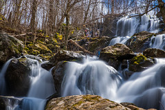 Dark Hollow Falls (Somsubhra Chatterjee) Tags: darkhollowfalls shenandoah nationalpark falls rocks trees spring 2019 water slowshutter longexposure d750 nikon tamron 2470 ndfilter 10stopnd