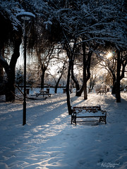 Alone in shadows (Through_Urizen) Tags: category eskisehir kanlikavakpark landscape places snow turkey canon canon1585mm canon70d outdoor winter bench lamp trees park citypark footsteps lightandshadow sun sunstar afternoon path table picnic