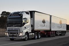 Coolibah Herbs - Volvo FH16 600 (Scottyb28) Tags: truck trucks trucking highway haulage diesel interstae