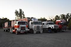 2017 Haulin' the Hume (Scottyb28) Tags: truck trucks trucking highway haulage diesel