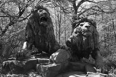 20.04.2019 11-53-3800_1 (TheFan1968) Tags: berlin tierpark friedrichsfelde tier denkmal löwe