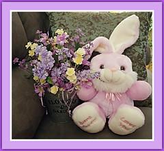 Some Bunny Loves You (bigbrowneyez) Tags: bunny flowers lovely stilllife arrangement beautiful frame cornice momshouse striking stunning amazing fun fabulous delightful season eastersunday easter pasqua celebration ottawa canada pail somebunnylovesyou tribute easterdedication