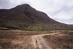 20190417a73_7412 (Gansan00) Tags: ilce7m3 α7ⅲ sony japan 大分 oita 日本 九重連峰 登山 landscape snaps ブラリ旅 04月 fe24105f4 trekking travelphotography 山